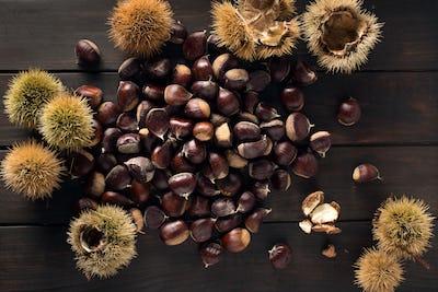 Sweet Chestnut still life