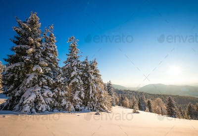 Fascinating picturesque landscape of the slope