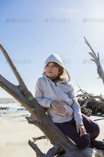 A six year old boy on a beach leaning on a driftwood tree trunk
