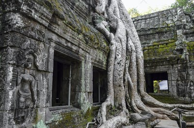Ankor Wat, a 12th century historic Khmer temple and UNESCO world heritage site. Arches and carved
