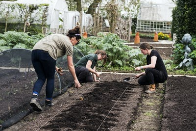 Three women working on a freshly laid bed of soil in a vegetable garden.