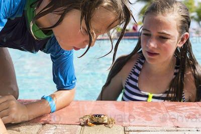 sibling at poolside looking at small crab