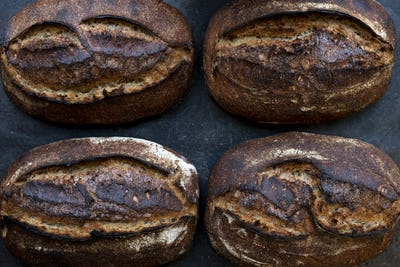 High angle close up of four freshly baked loaves of bread in an artisan bakery.