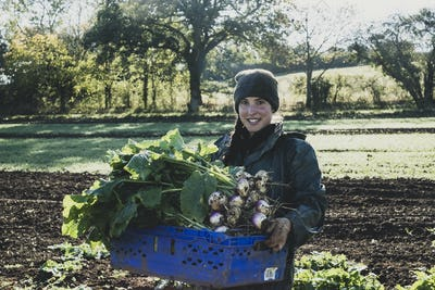 Smiling woman standing in field, holding blue crate with freshly harvested turnips, looking at