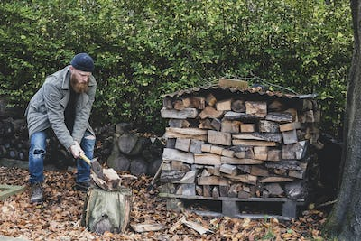 Bearded man wearing black beanie and parka standing in garden in autumn, using axe to chop piece of