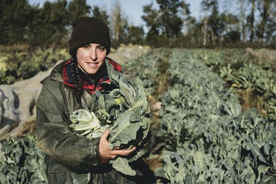 Smiling woman standing in field, holding blue crate with freshly harvested cauliflowers, looking at