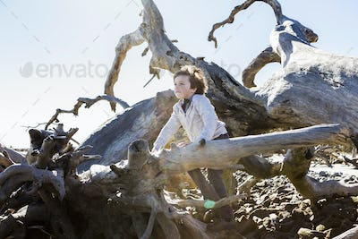 6 year old boy climbing on massive trees lying in ocean water, Driftwood Beach, Jekyll Island,