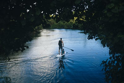 High angle view of man and his son paddle boarding along a jungle river.