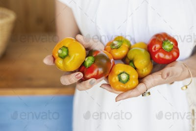 Close up of person holding freshly picked picked red and yellow peppers.