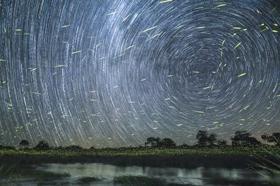 A star trail at night on the banks of the river with firefly trails