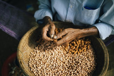 High angle close up of man shelling peanuts outside of his house.