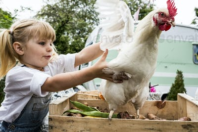 Close up of blond girl holding white chicken flapping it's wings.