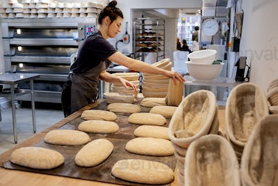 Woman wearing apron standing in an artisan bakery, shaping sourdough loaves for baking.