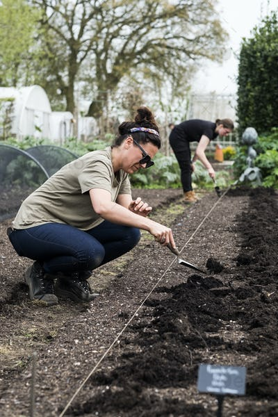 Two women working on a freshly laid bed of soil in a vegetable garden.