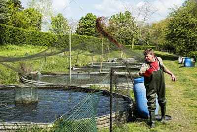 Man wearing waders standing next to water tank at a fish farm raising trout., feeding fish.