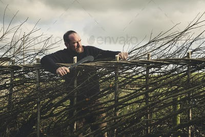 Smiling bearded man holding bill hook standing next to a newly built traditional hedge.