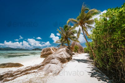 Sunny trail with palm trees at Seychelles, La Digue, Anse Source d'Argent beach