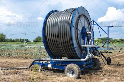 Irrigation sprinkler and rolled hose.  Watering concept.