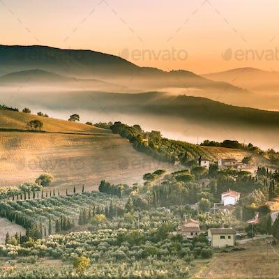 Tuscan village life in Morning Fog