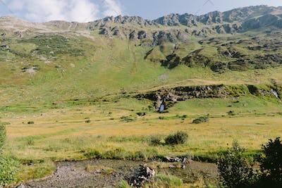 green summer mountain range