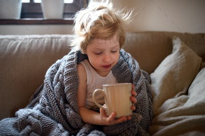 Front view of sick small boy with blanket on sofa indoors at home, holding tea