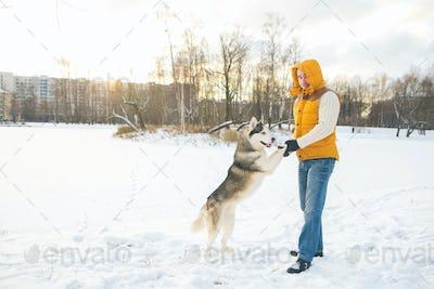 Man with dog husky malamute winter park