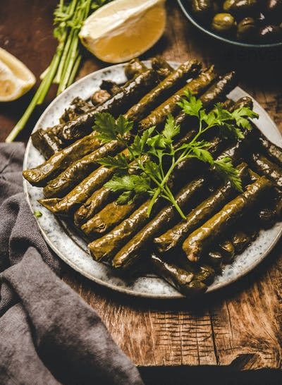 Turkish Sarma or Dolma with rice and spices on plate