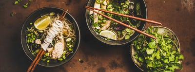 Vietnamese asian traditional soup Pho Ga, wide composition