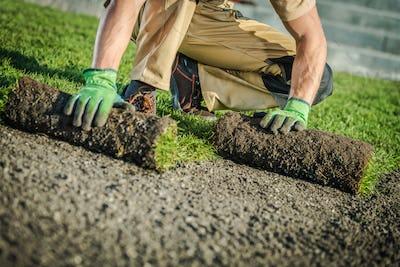 Natural Grass Turfs Installer Gardening Theme
