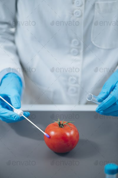 Food Safety Laboratory Analysis - Biochemist looking for presence of pesticides in tomatoes