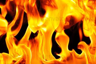 Flame burns close up on black background