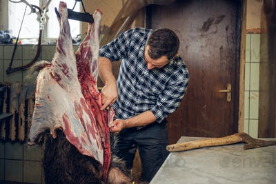 Bearded butcher cuts up the carcass of wild pig.