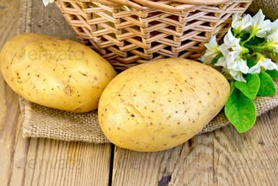 Potatoes yellow with flower and basket on sackcloth