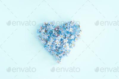 Blue Tender Heart of Fresh Flowers