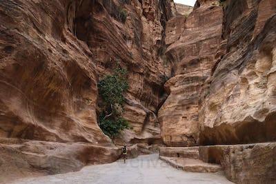 Man walking along path through rock formations at Petra, Jordan.