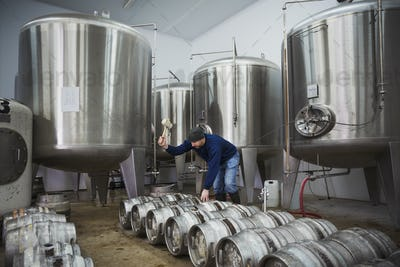 Man standing next to a row of metal beer kegs, filling them with beer from the fermentation tanks.