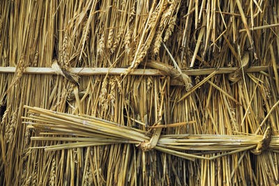 Close up of straw laid on a roof, and pegged into place with wood pegs and twisted reed.