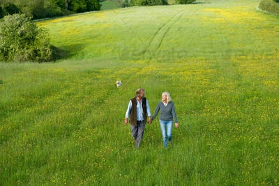 High angle view of man and woman walking hand in hand across a meadow.