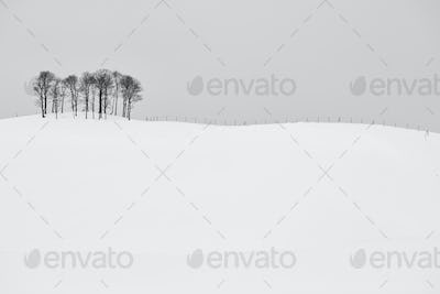 Snow-covered winter landscape with small copse on distant hill.