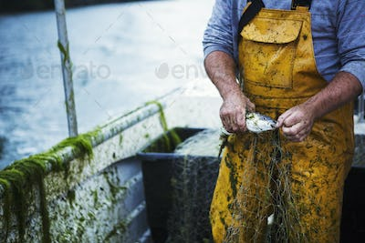 A fisherman in yellow waders extracting a fresh caught fish from the net.