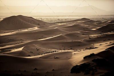 Desert landscape with caravan walking across sand dunes, a plain in the distance.