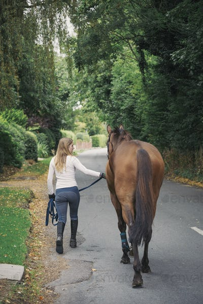 Rear view of woman and a brown horse walking along a road.