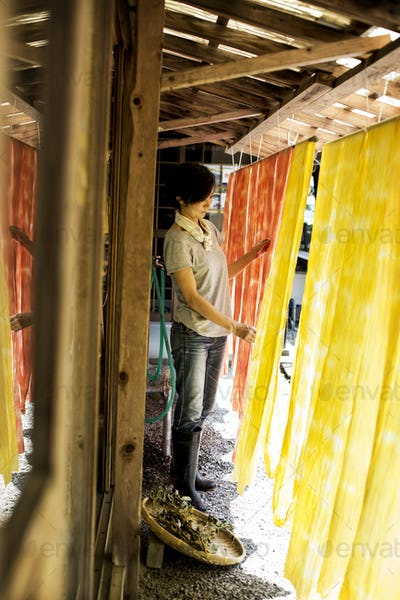 Japanese woman standing outside a textile plant dye workshop, hanging up freshly dyed bright yellow