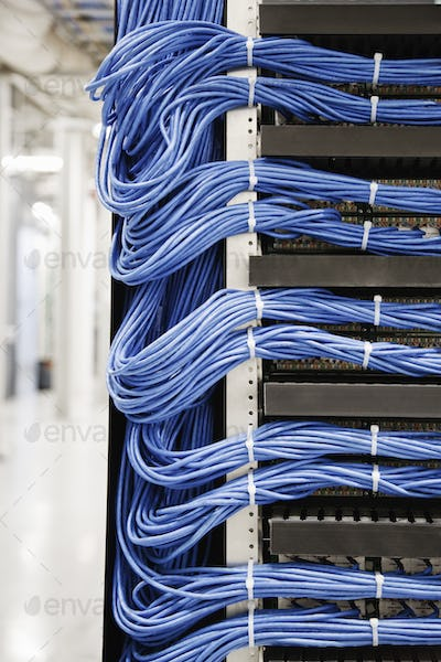 Cat 5 cables hooked to servers in a computer server farm.