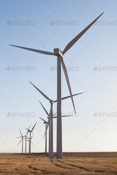 Tall wind turbines in open country farmland in Washington.