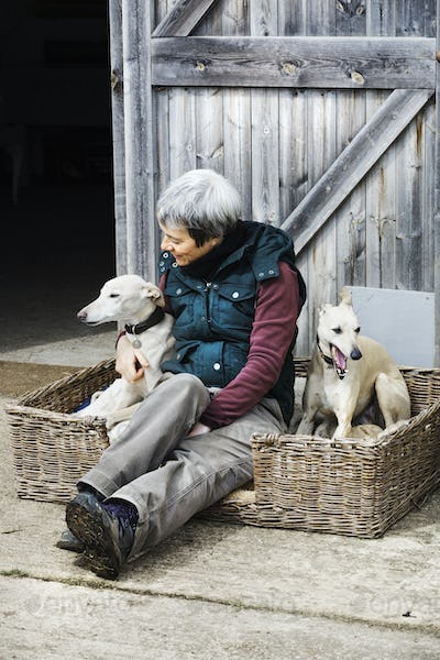 A woman sitting beside two greyhound dogs in a wicker dog basket.