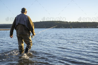 A fly fisherman walking to a new position in shallow salt water while fishing for searun coastal