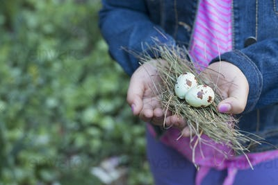 A girl holding out cupped hands, with a small bunch of twigs and two bird's eggs.