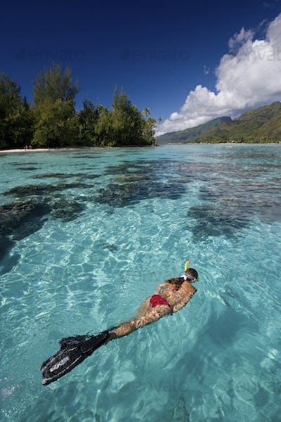 Snorkeler relaxes in a lagoon off of Moorea. The crystalline waters provide a good environment for