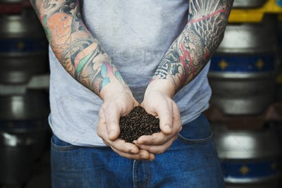 Close up of man standing in a brewery, holding some dark brown malt, tattoed arms.